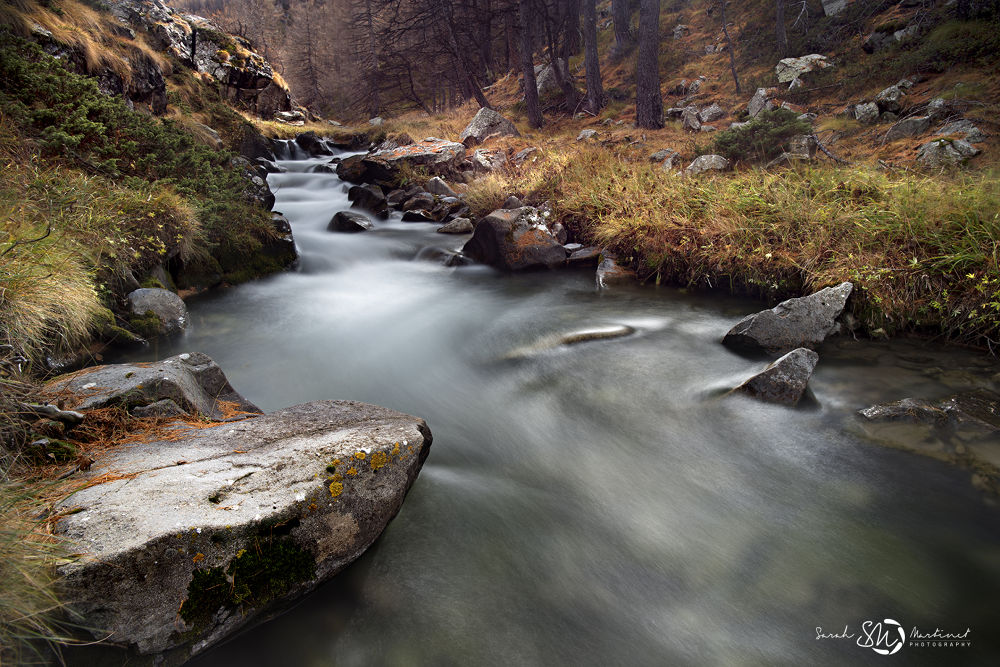 Autumn river by Sarah Martinet