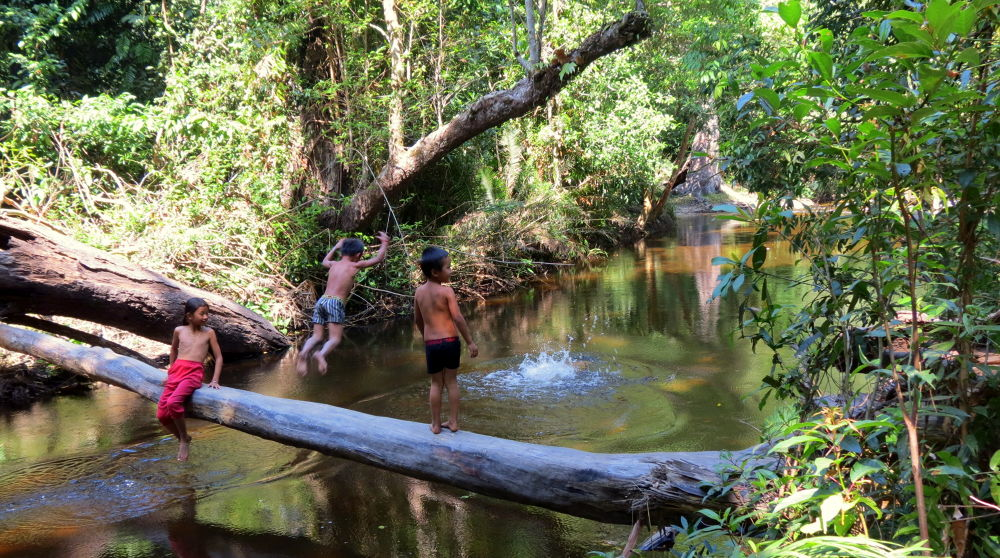 JUMP IN THE CAMBODIA JUNGLE WATER by johndb