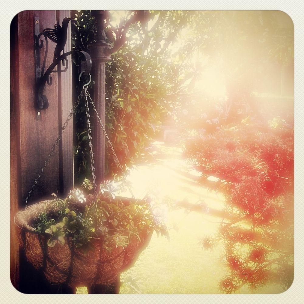 Dreams 2... by juliogmilatfotografia