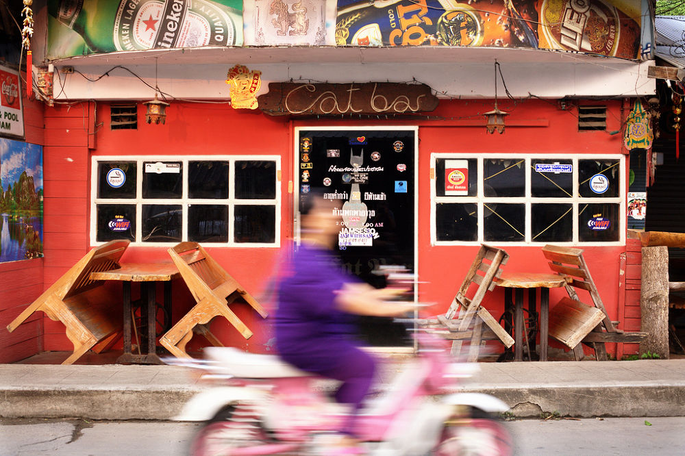 Cat bar and a woman on the pink bike  by Mishel Breen