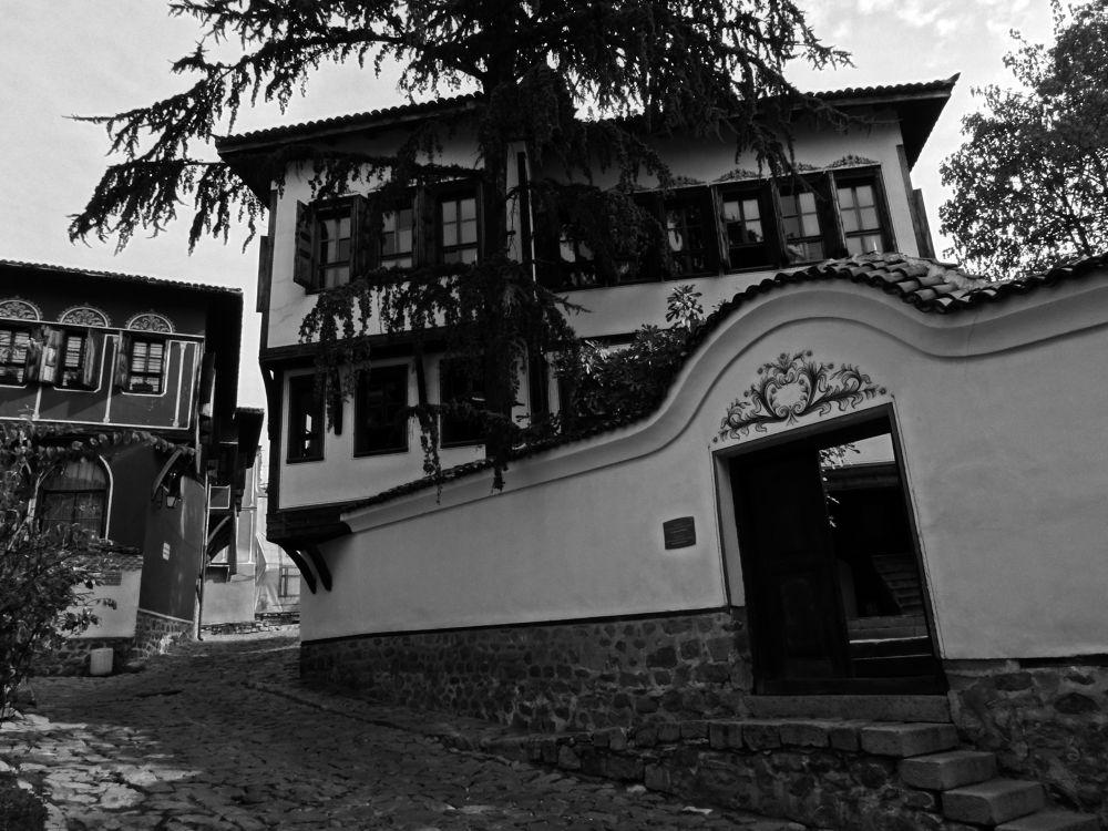 Plovdiv, old town by Dimitar Balyamski