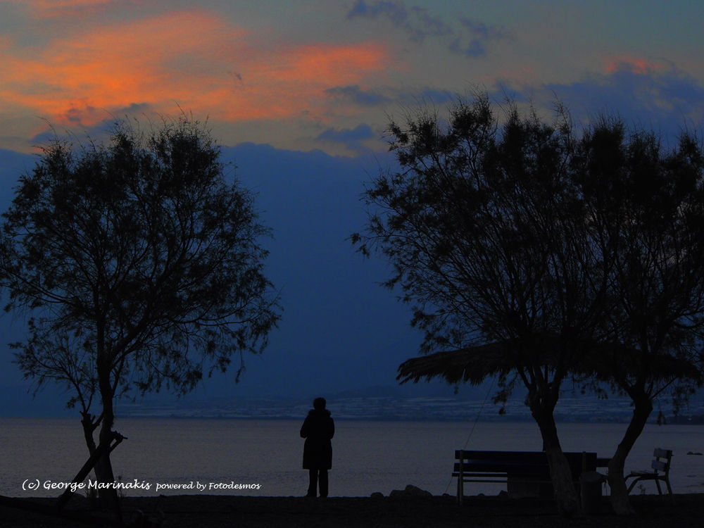 Winter Loneliness  by george marinakis
