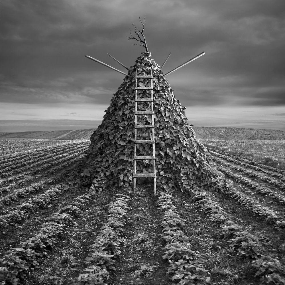 Pyramid by Dariusz Klimczak