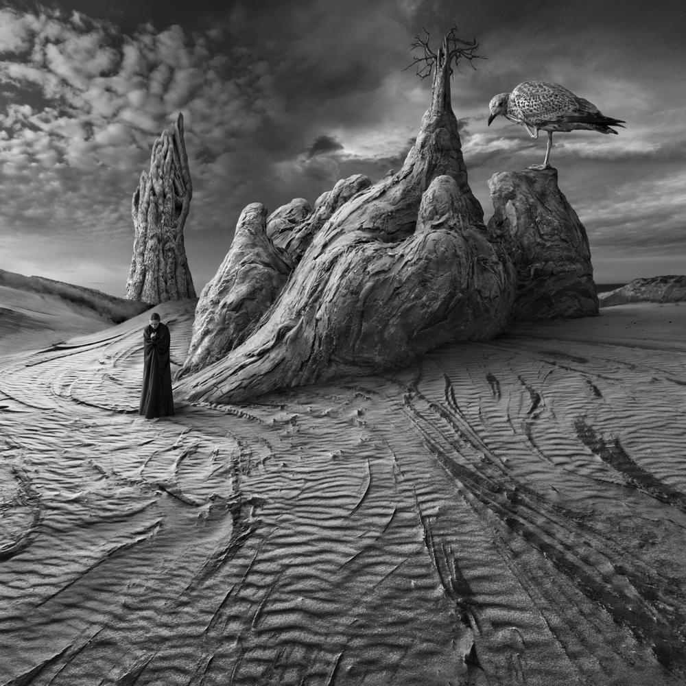 Photo in Black and White #square #surreal #dark #wood #tree #bird #woman #desert #dunes #sand #light #contrast #montage #monochrome #texture