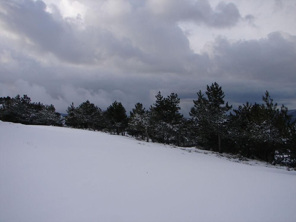 Monte S. Angelo ancora in biancooooo 037 by falcomatto