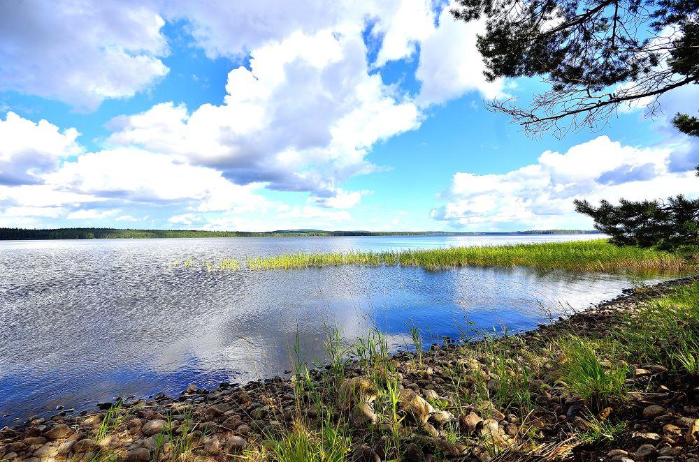 Lake #8 by miticx
