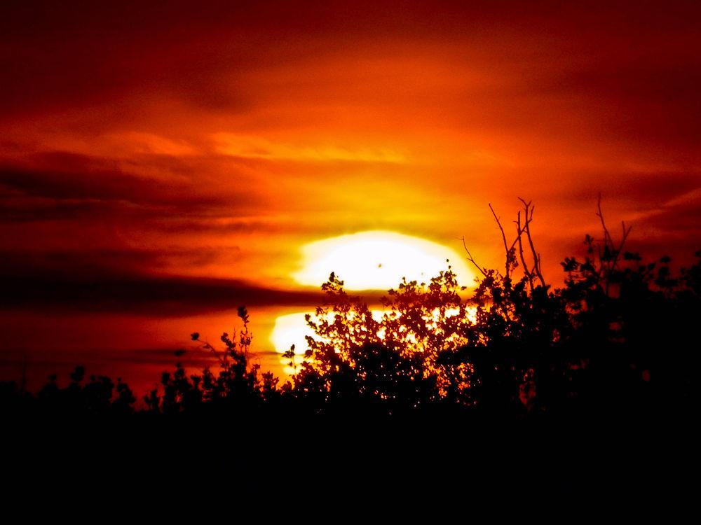 Everglades sunset by Florida Wildlife Gallery