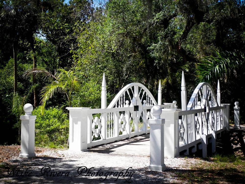 Koreshan Historical Site by Florida Wildlife Gallery