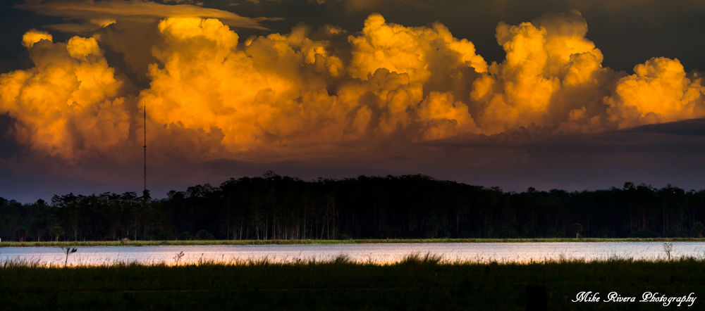 Back yard cloud formation by Florida Wildlife Gallery