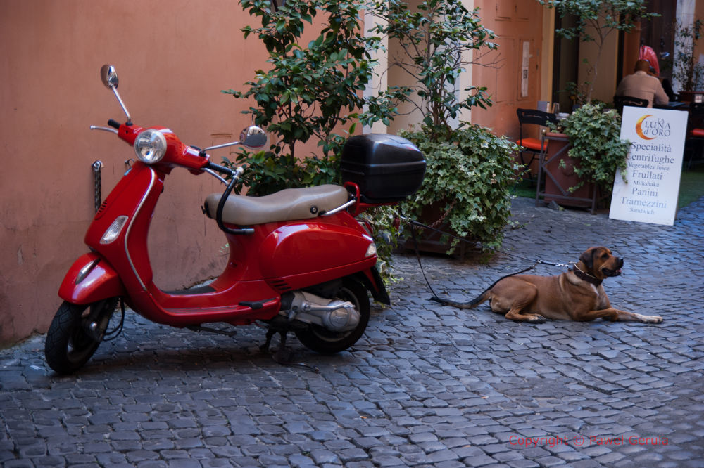 Scooter in Roma by Pawel Gerula