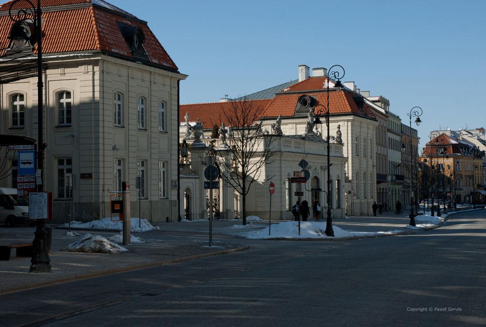 Potocki Palace in Warsaw by Pawel Gerula