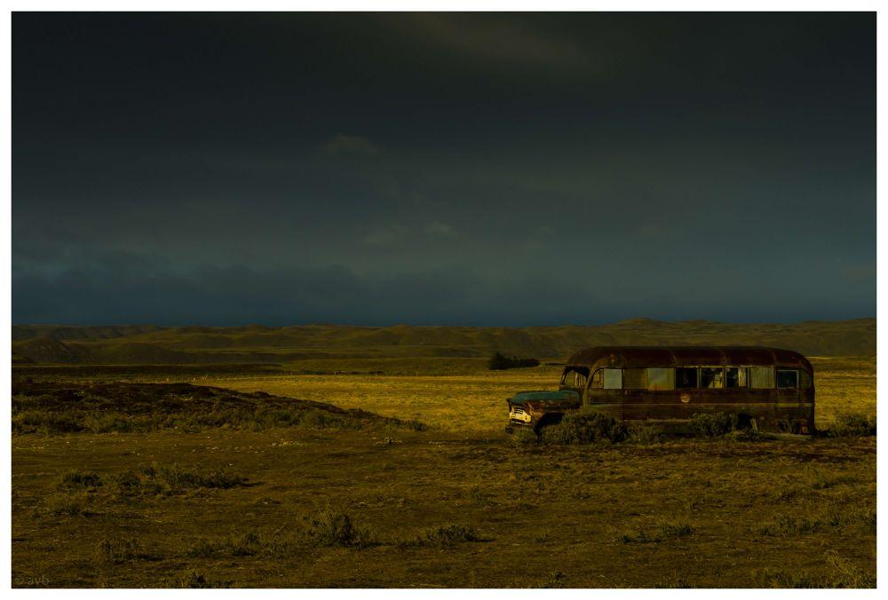 Tierra del Fuego, Patagonia, Chile. by alex von bischhoffshausen