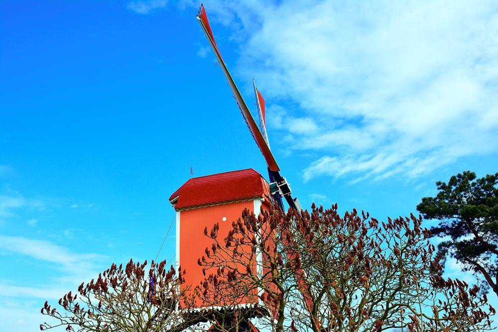 Windmill by toinelenssen