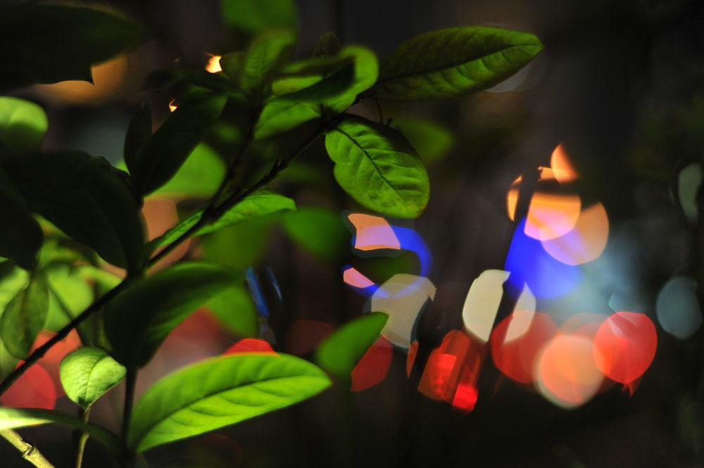 Light up the night by vickylennon