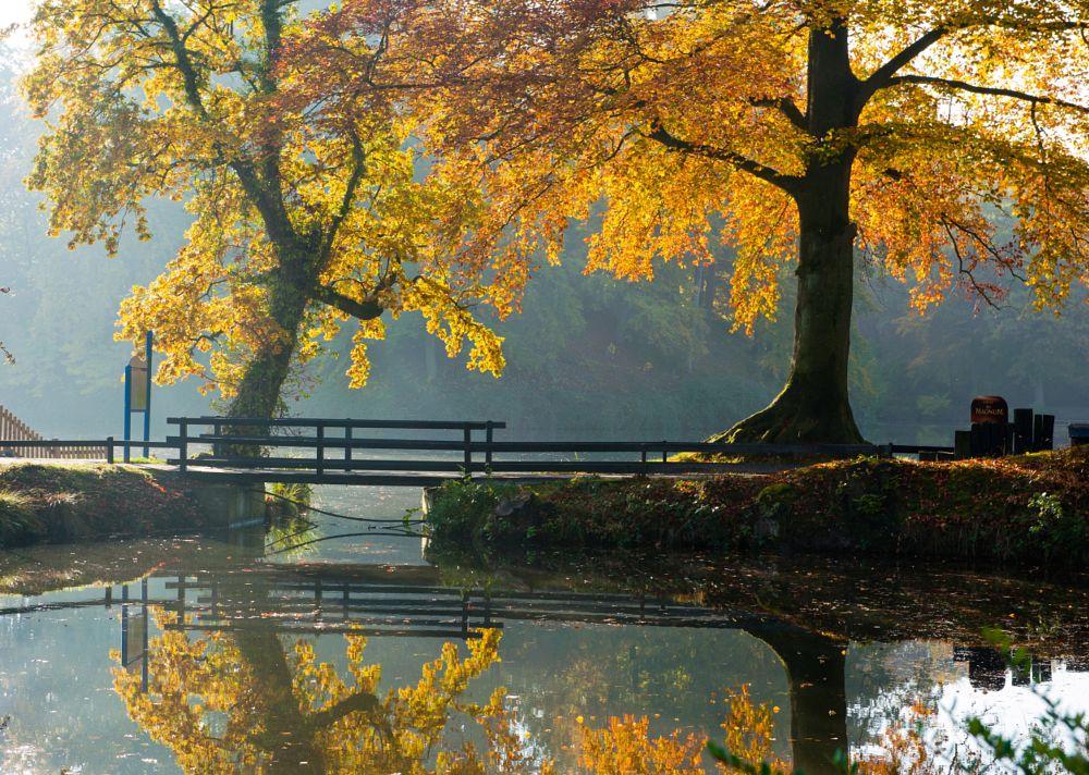 Autumn 2 by guenterpassage