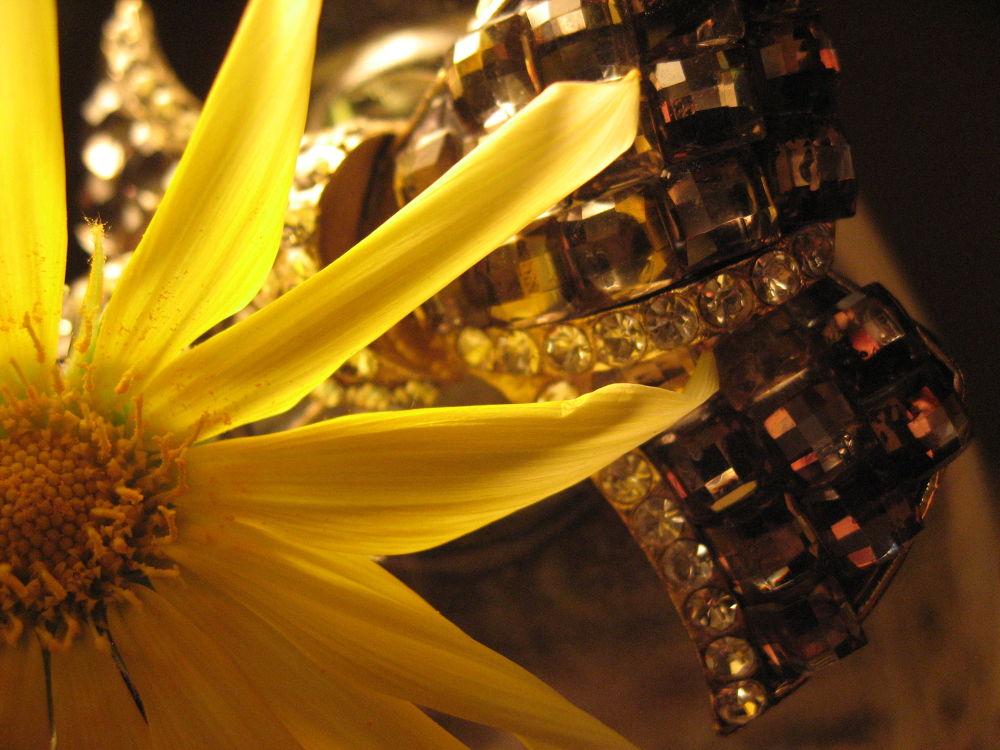 Yallow flower by kudis