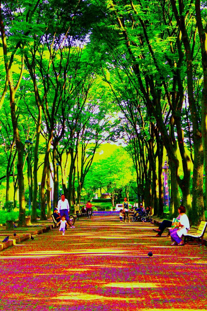 In the Park by Manabu Moriwaki
