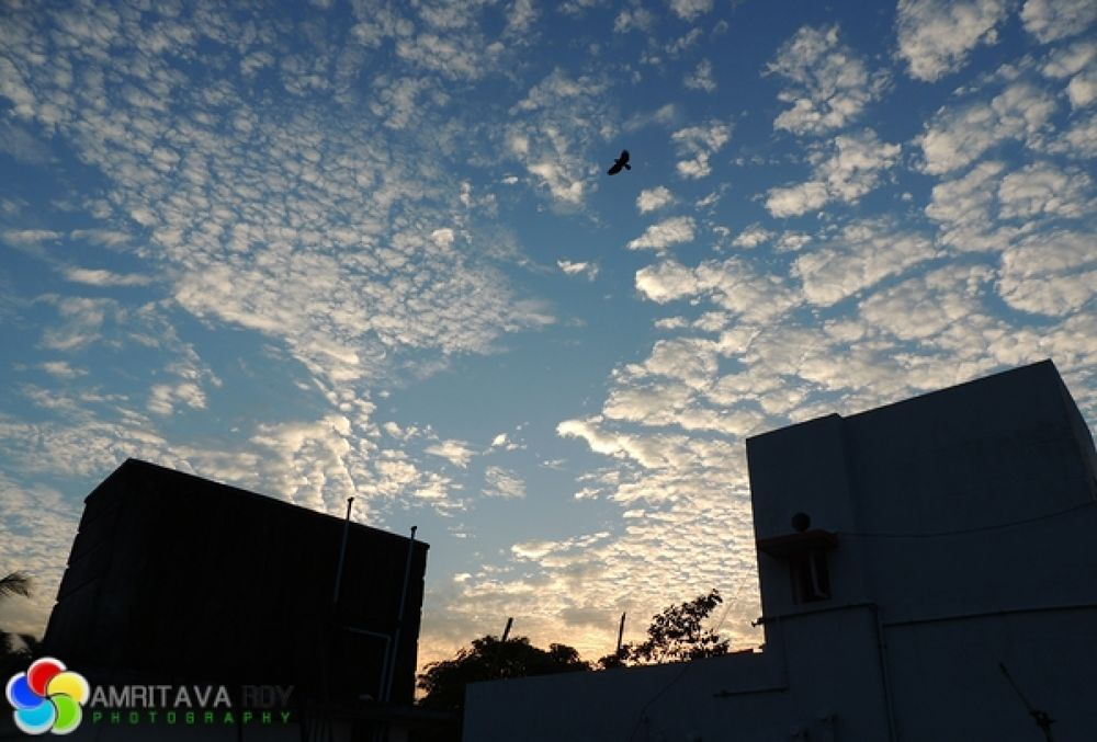 Evening Sky by Amritava Roy