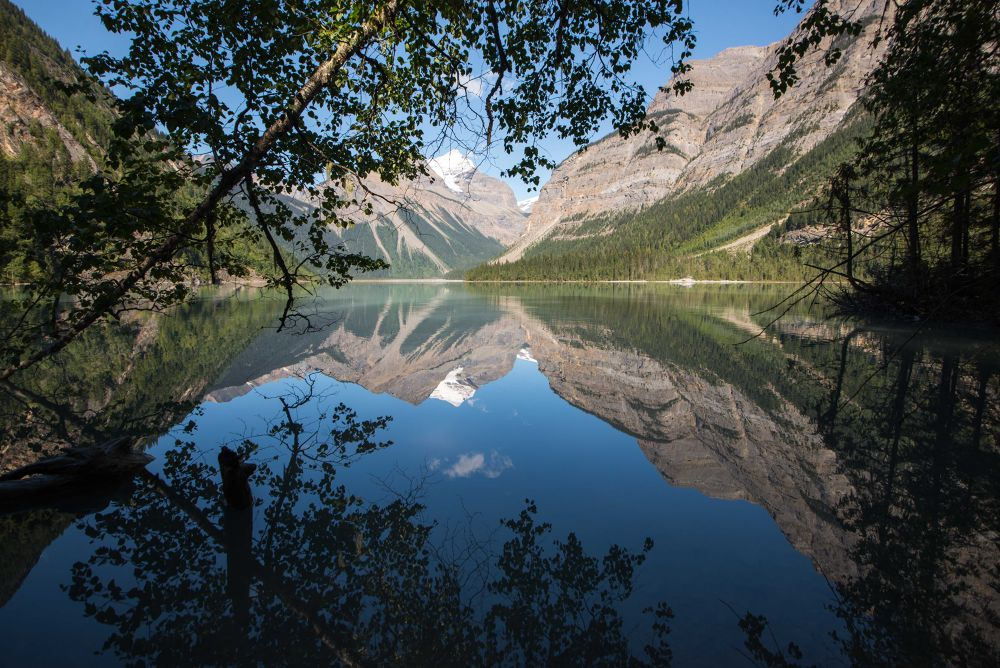 Photo in Landscape #nature #kinney lake #lake #water #reflections #landscape #mountains #mount robson provincial park #tree #snow #plants