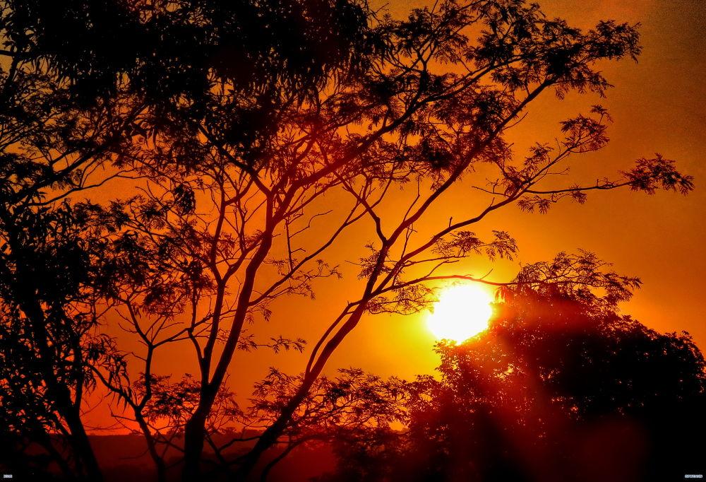 Autum Sunset  by Nestor
