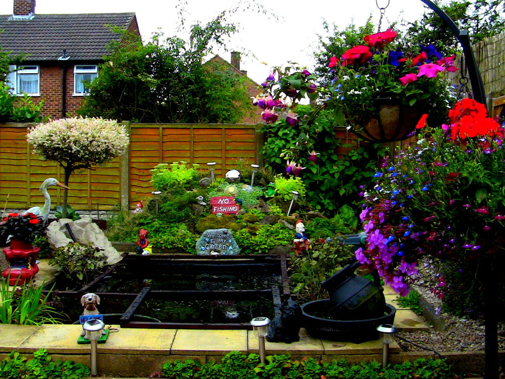 IMG_0607 lovely garden by craiggriffiths1485