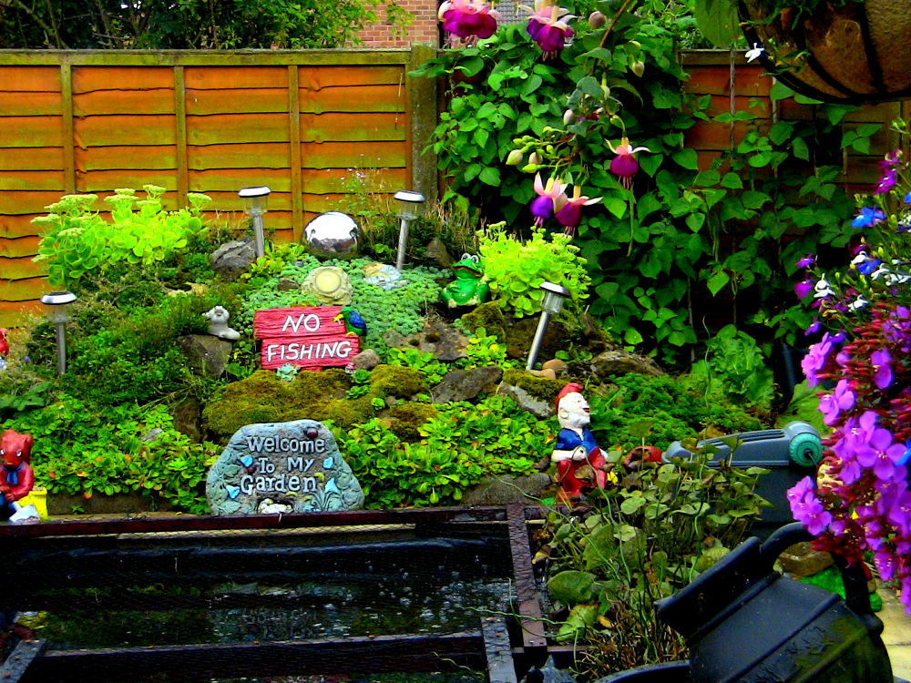 IMG_0609 lovely garden 2 by craiggriffiths1485