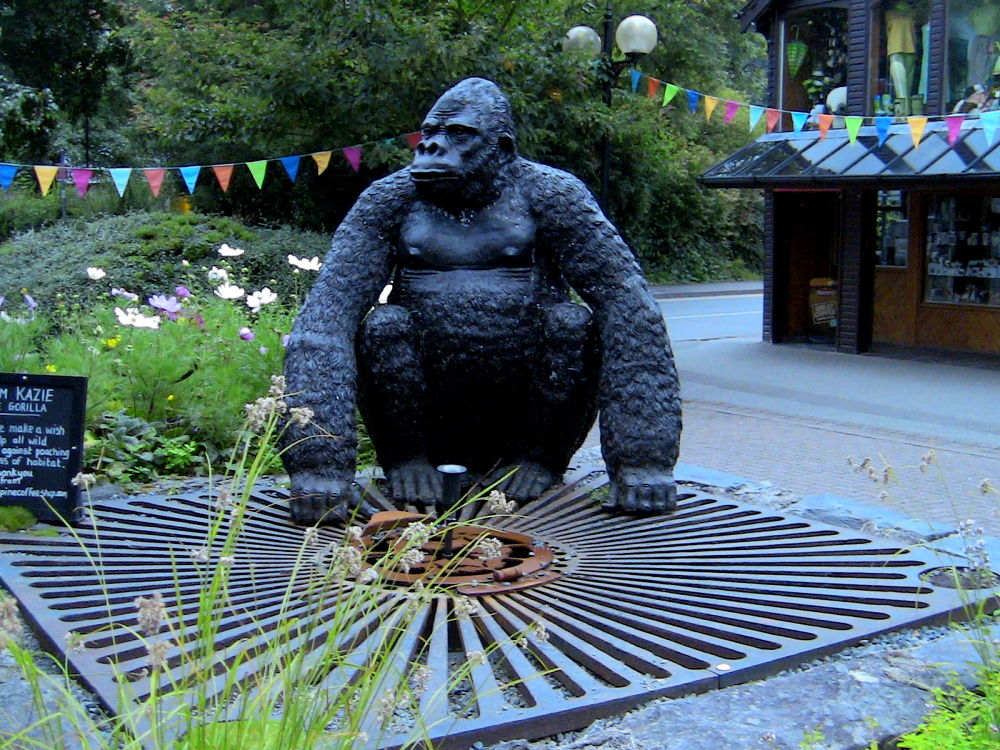 IMG_0445 kong by craiggriffiths1485