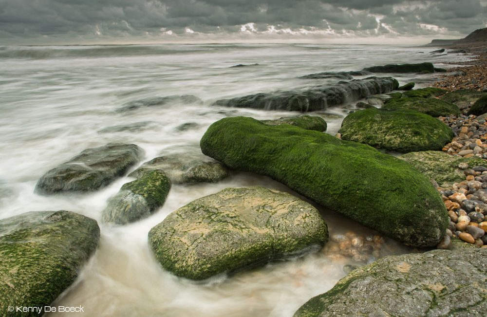 Photo in Landscape #seaweed #zeewier #rocks