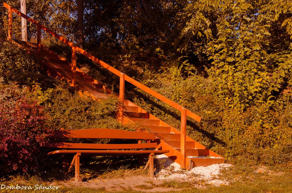 Resting place by Sándor Dombora