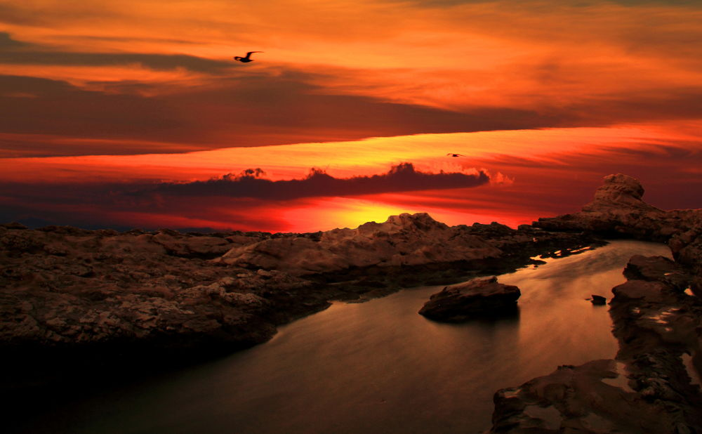 Spectacle of nature by Francesco Russo