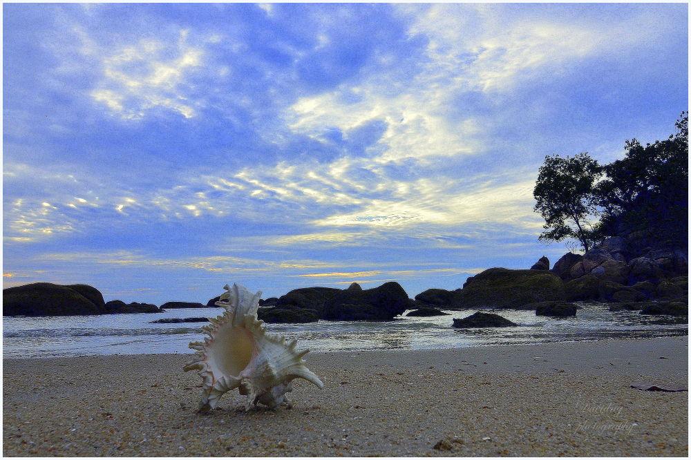 Seascape DSC_3381 by davidngsh