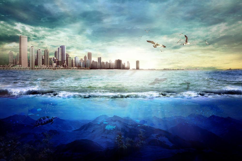 Photo in Fine Art #city #under water #sea #sky #shine #bali #bird