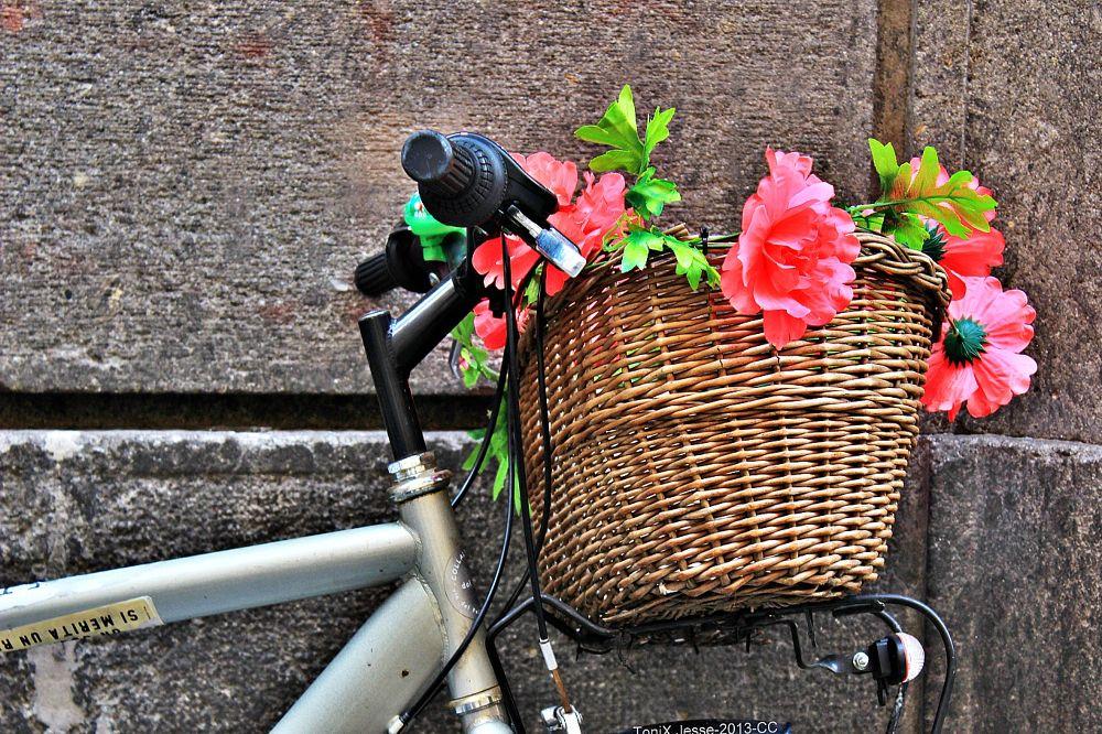 """the Wiker basket""   (Almost 3D basket) by tonixjesse"