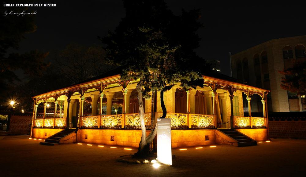 Royal Palace At Night by visbimmer79