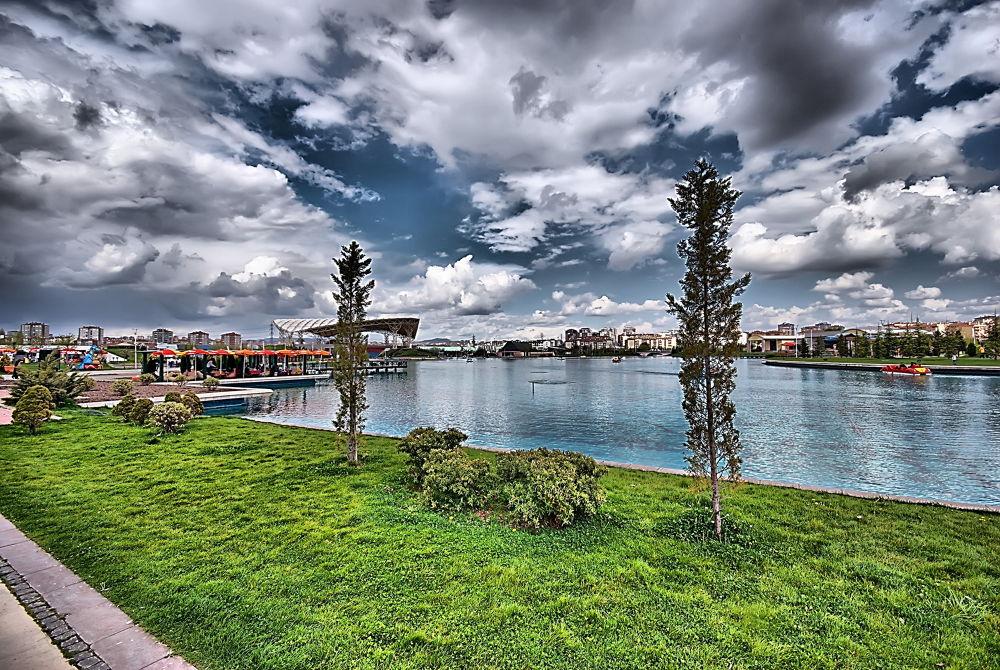 Wonderland by baybora