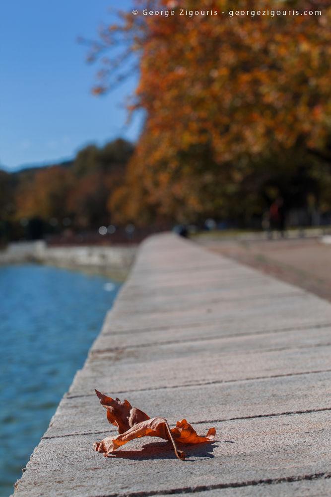 Fall 2 by George Zigouris