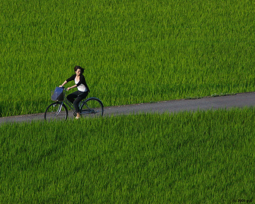 Girl on bike by fotogeebee