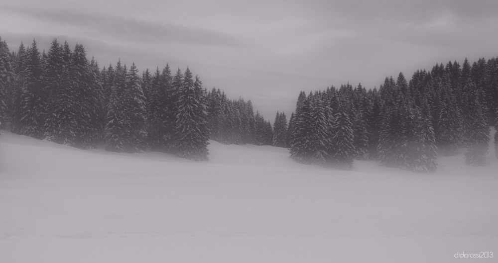 Photo in Landscape #campolongo #asiago #veneto #italy #black and white