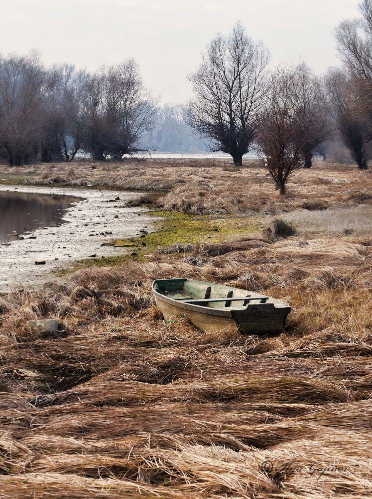 stranded by Ilija Gajinov