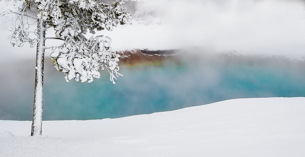 Hot Spring by Peter Paterson