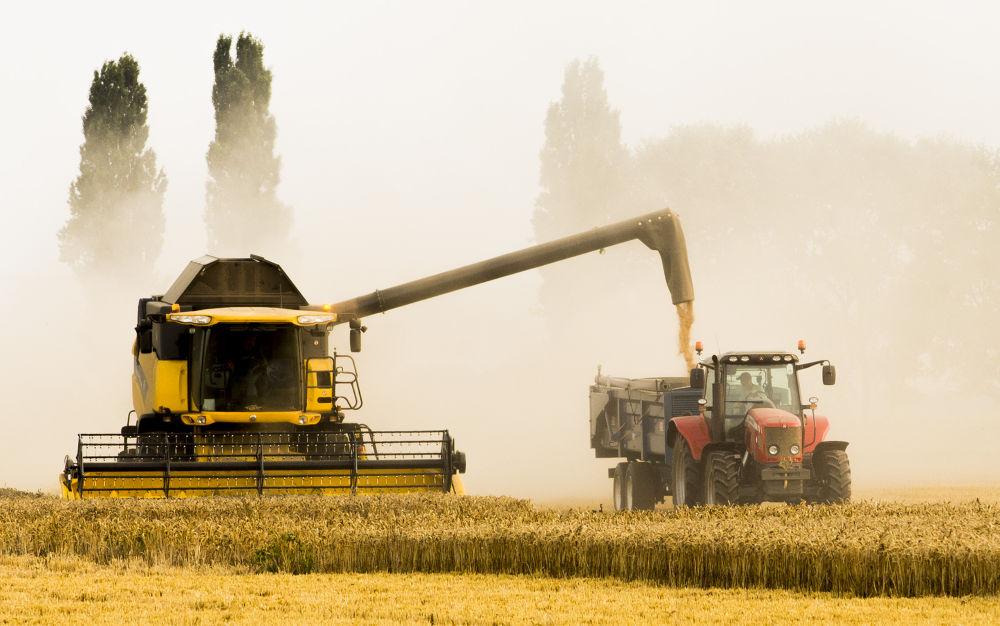 Harvest by robfender