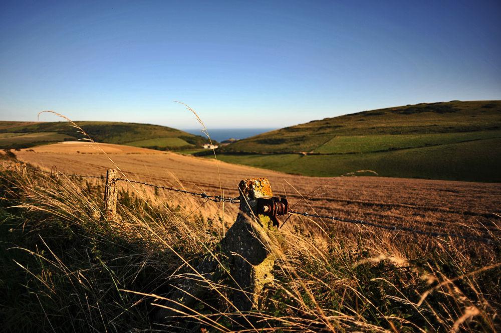 Dorset Landscape by sebastianwuttke