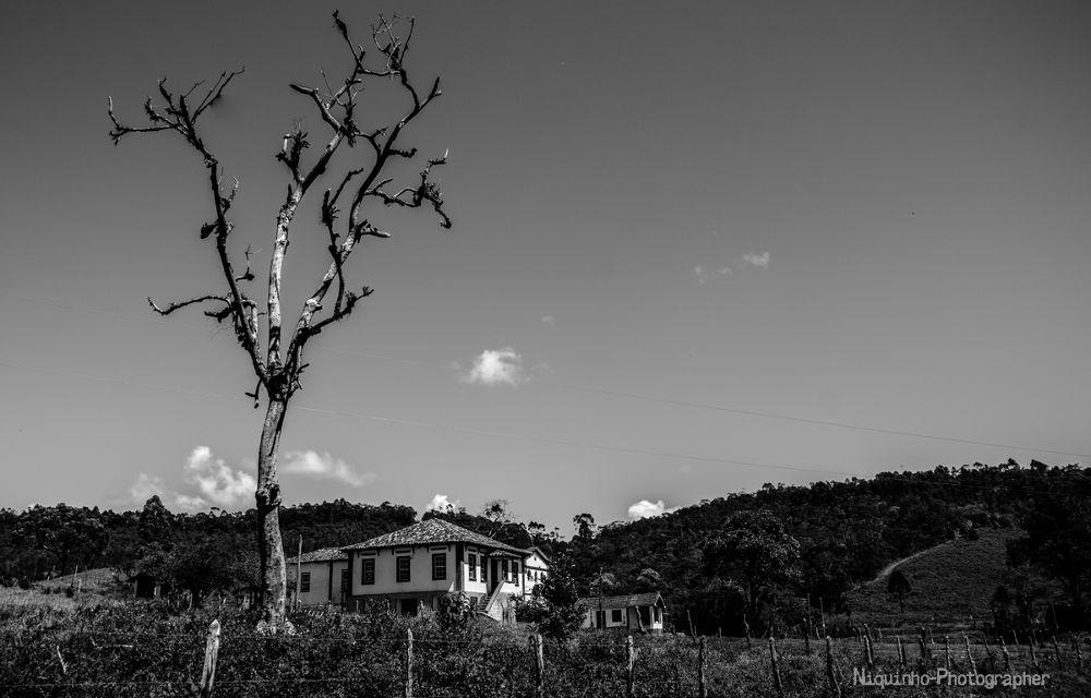 Beleza rural by Leandro C. Souza