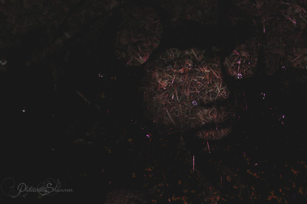 Hidden Deep by Shannon Hreha-kilgore