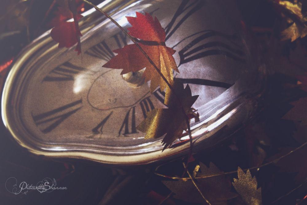 Time for Autumn by Shannon Hreha-kilgore