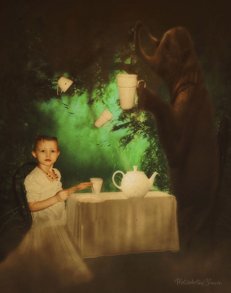 Tea Party for Two by Shannon Hreha-kilgore