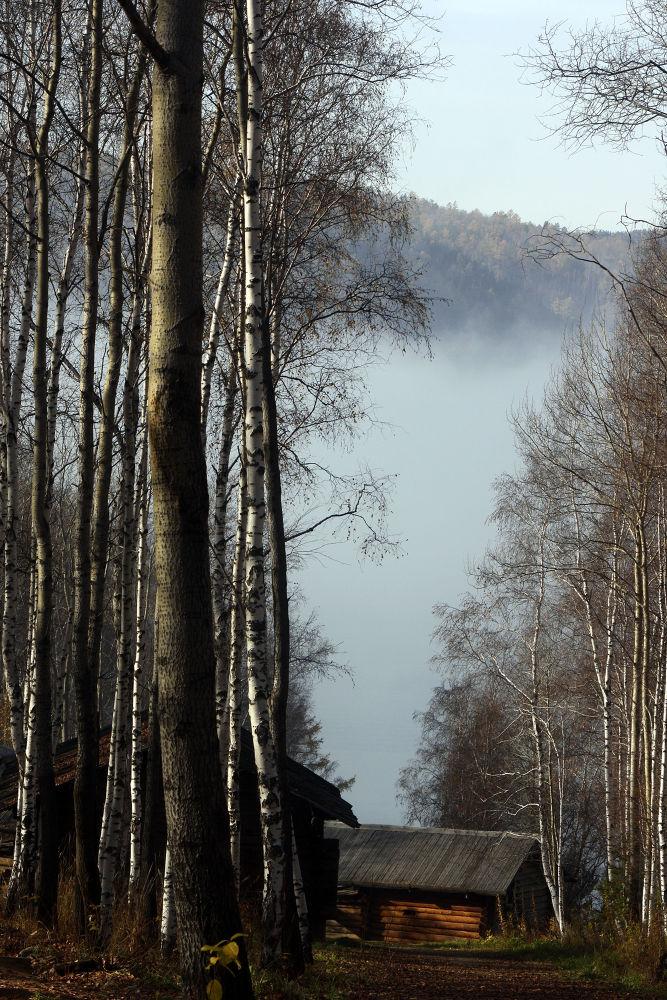 Morning Fog by monanorrman