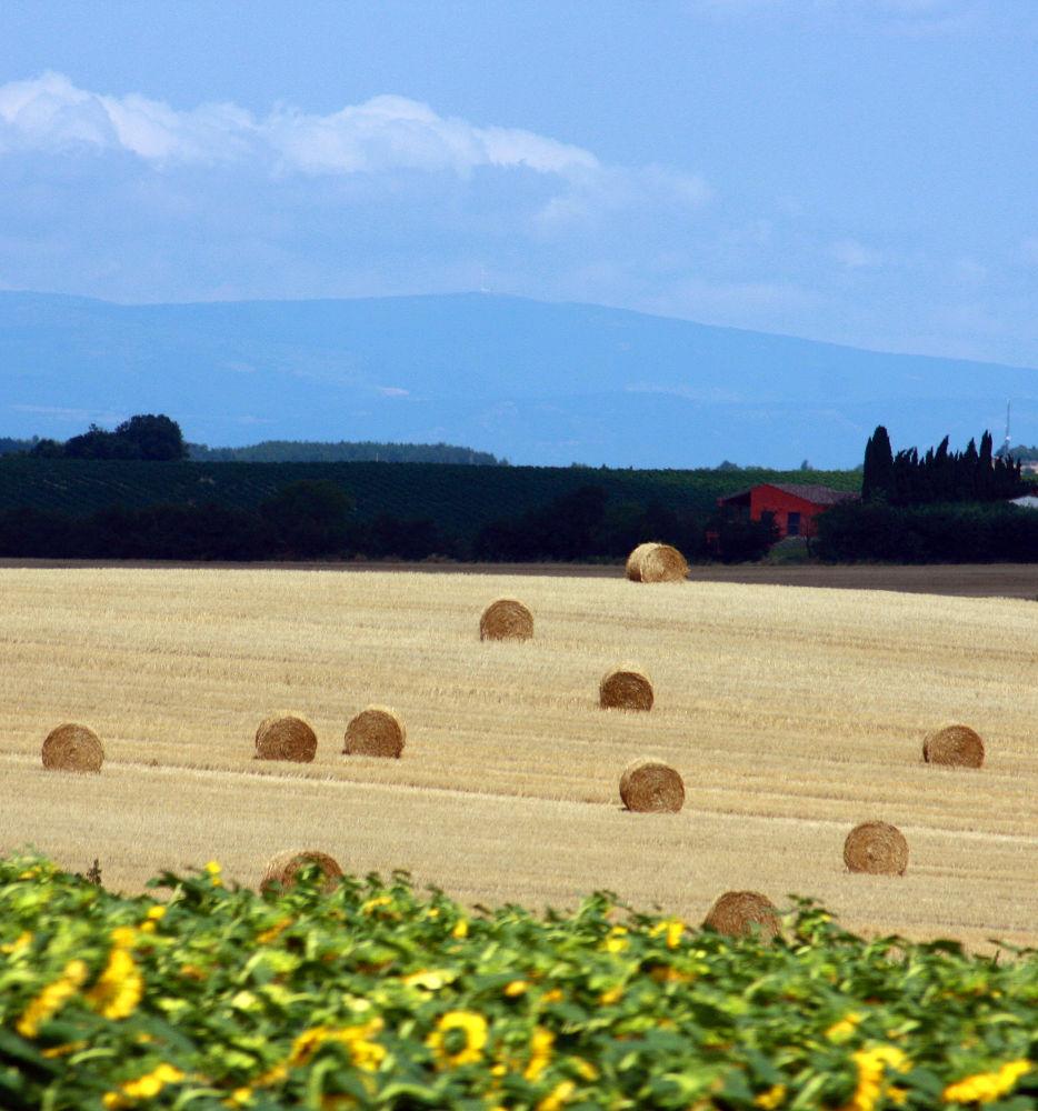 Summer in France by monanorrman