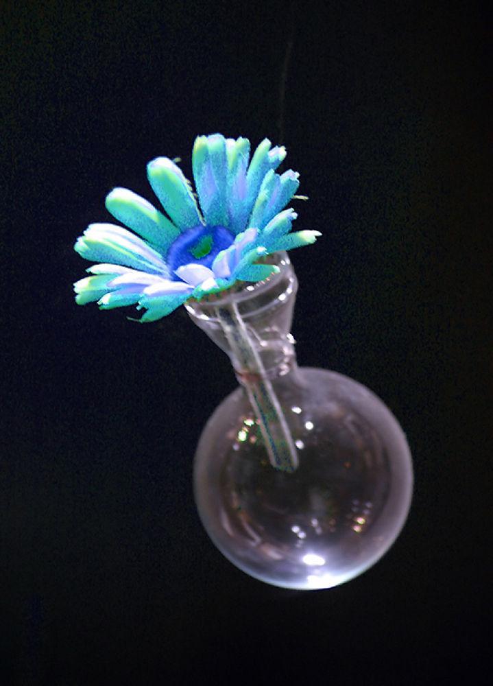 flower by monanorrman