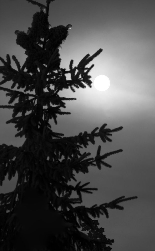 the moon  by monanorrman